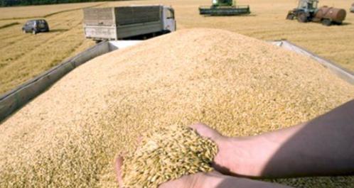 Production d'engrais naturels : vers un partenariat scientifique algéro-finlandais