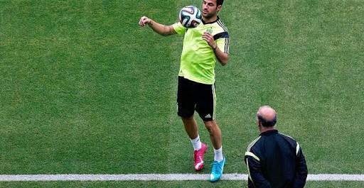 Espagne Fabregas-Del Bosque, le clash !