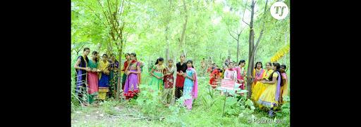 Eco-féminisme : ce village indien plante 111 arbres quand une petite fille naît