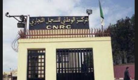 Algérie:Commerce et réparation auto, les activités les plus prisées des opérateurs économiques physiques (étude)