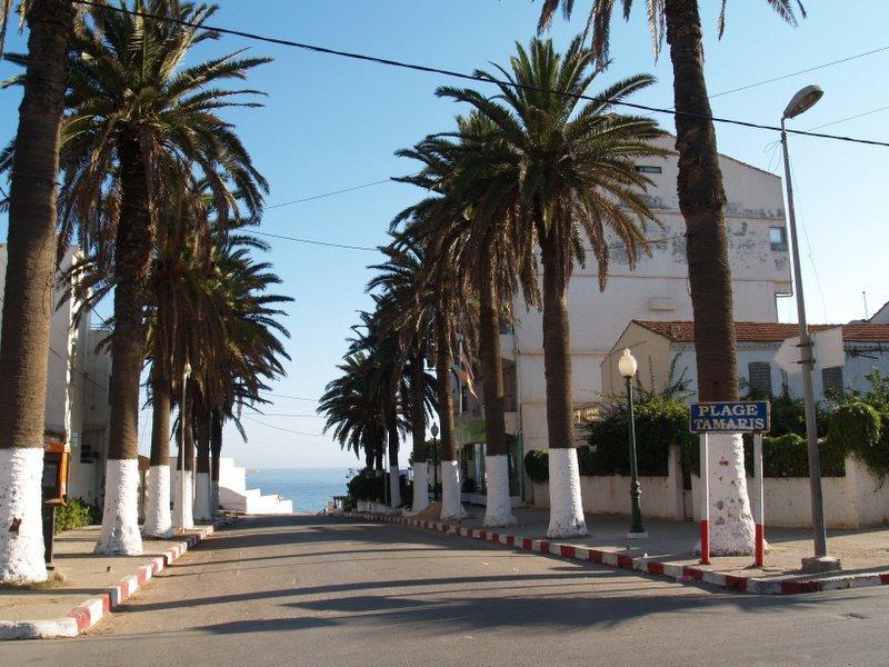 Femme tunisienne cherche mariage image 4