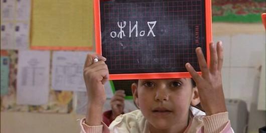Tamazight, langue nationale et officielle De l'ostracisme à la dédramatisation