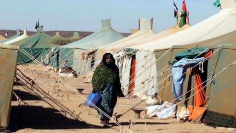 Une délégation cubaine en visite de travail dans les camps de réfugiés sahraouis