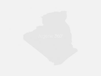 L'amour à l'algérienne: ou quand le « Mimzy » rencontre « l'Alien »