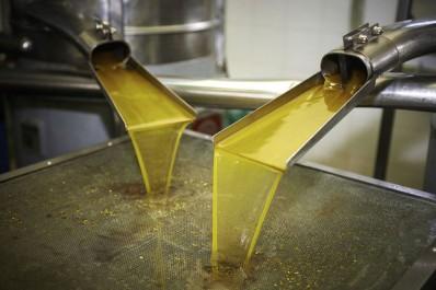 Ils sont attendus début février à Bouira : Les hommes d'affaires indonésiens aiment l'huile d'olive