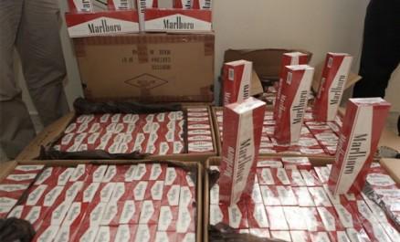 Saisie de plus de 14.000 paquets de cigarettes à Tébessa