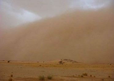 Alerte météo : Vents forts jusqu'à 80 km/h sur le Sahara central, le Nord du Sahara et les Oasis