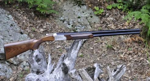 TISSEMSILT : Saisie d'un fusil de chasse
