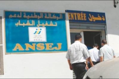 Laghouat: L'Ansej finance 16 projets