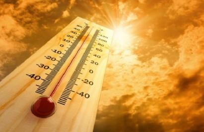 Eté austral : l'Australie suffoque sous des températures record