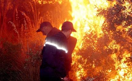 Parc A Dahmouni (TIARET) : Un incendie ravage plusieurs véhicules