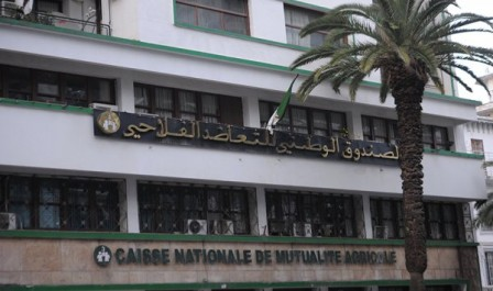 Tlemcen: La CRMA ouvre son guichet d'assurance frontière au port de Ghazaouet