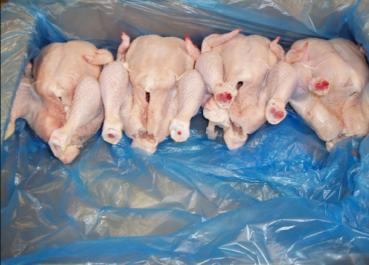 Batna : Saisie de 30 quintaux de viandes blanches avariées