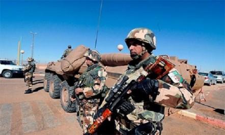 Ain Defla : un élément de soutien aux groupes terroristes arrêté