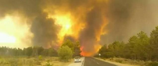 Feux de forêts à El Tarf: intervention de 2 hélicoptères bombardiers à eau et 980 agents pour lutter contre les incendies