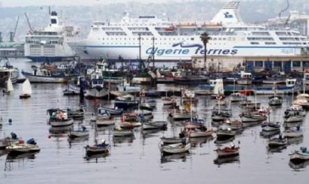 Port d'Alger : 150 mises en demeure aux propriétaires des vieux bateaux abandonnés