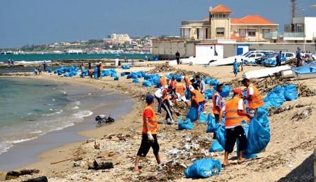 Comité éco-citoyenneté pour la préservation de l'environnement : Après les plages, une campagne de sensibilisation dans les quartiers