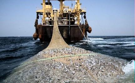 Algérie : Rencontre méditerranéenne autour de la pêche durable