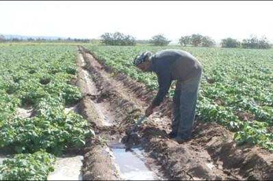 Développer l'irrigation pour favoriser l'émergence d'un pôle agricole d'excellence
