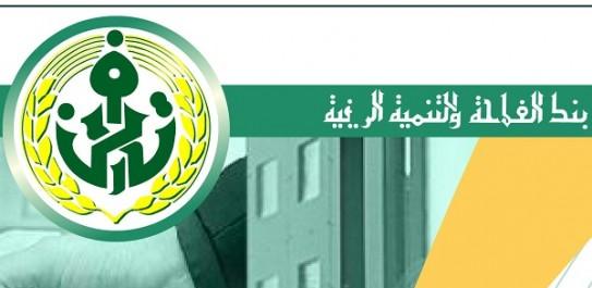 Algérie: 2.086 projets d'investissement financés par la BADR dans la wilaya d'Adrar, depuis janvier 2017