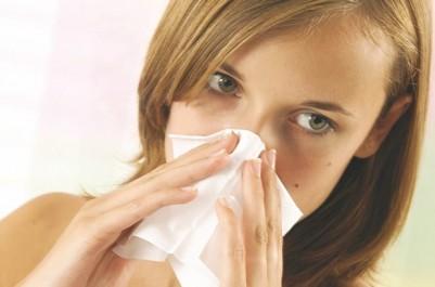 Désensibilisation de la rhinite allergique : Le traitement par voie orale en cours d'enregistrement