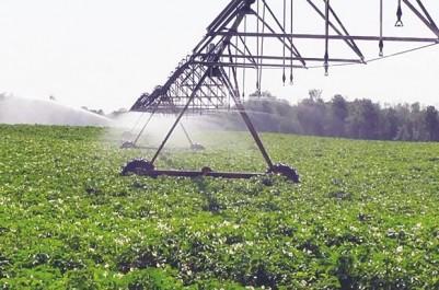 Séminaire international sur l'environnement, l'agriculture et la biotechnologie à Bouira : Les dangers de l'intensification agricole
