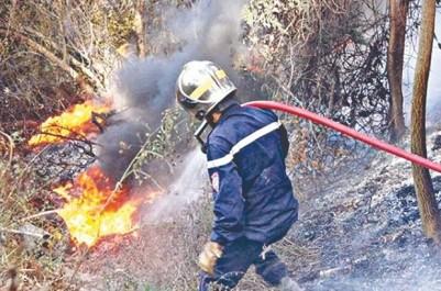 Victimes des incendies à Mila L'opération d'indemnisation lancée