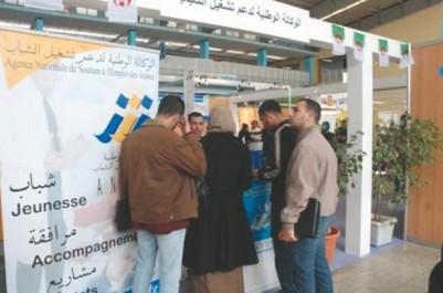 Tiaret : La caravane nationale de l'entrepreneuriat arrive