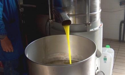 Exportation de 15.000 litres d'huile d'olive en 2017 par une société algérienne privée