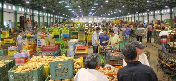 Algérie: Démarches pour l'ouverture de nouveaux marchés de gros de fruits et légumes à travers la wilaya d'Illizi