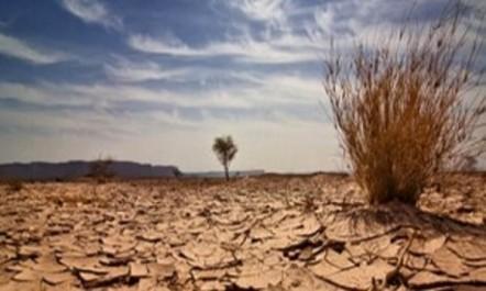 L'Algérie tient ses promesses pour le combat climatique