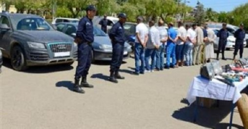 El Tarf : Récupération de 42 voitures volées (Sûreté de wilaya)