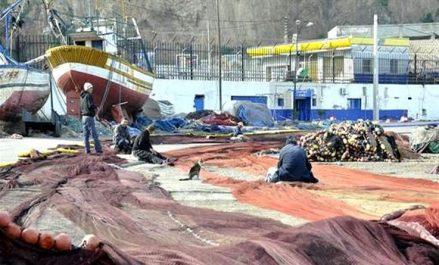 Pêche-Tlemcen: plus de 200 projets d'investissement identifiés