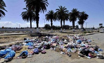 Alger: plus de 90 décharges sauvages éradiquées en novembre