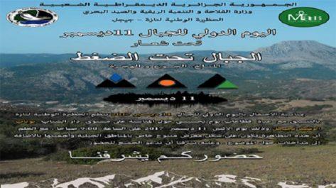 Célébration de la Journée mondiale de la montagne