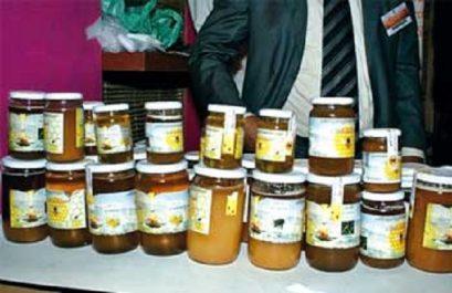 Ouverture de la 2e édition de la fête du miel : Du miel de très bonne qualité à 4 000 DA le kg