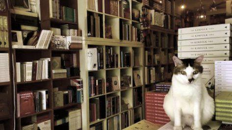 Une petite librairie pour «ouvrir les esprits»