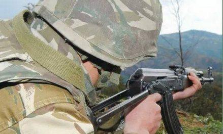 Deux abris pour terroristes détruits par un détachement de l'ANP à Skikda