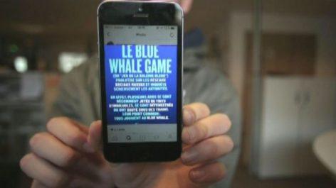Le jeu de la baleine bleue fait une autre victime à Sétif