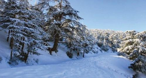 À l'Est et au Centre du pays : Chutes de neige sur les hauteurs dépassant les 800 m
