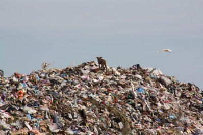 La pollution atteint un seuil critique