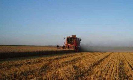 Trois nouvelles résolutions de l'ONU : La FAO salue les décisions relatives à l'agriculture et la pêche