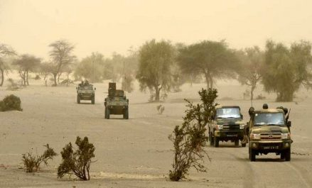 Sahel 2017: des défis sécuritaires, une crise humanitaire et des influences étrangères
