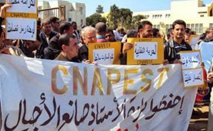 Tizi Ouzou : la grève des enseignants du CNAPESTE reconduite