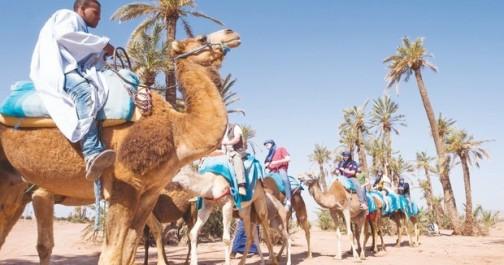 Alors que le pnud fait la promotion du sud algérien :  Les agences de tourisme et de voyages butent sur le problème de visa