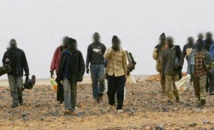 Biskra : arrestation de 13 migrants clandestins