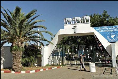 Parc Zoologique de Benaknoun : L'APW d'Alger-centre demande la gestion du parc