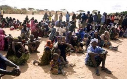 Les conflits et le changement climatique, causes majeures de la faim et de la pauvreté en Afrique