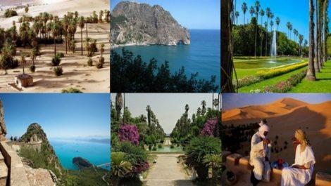 Lancement d'une plateforme numérique pour les demandes d'agrément : Le secteur du tourisme se met à la page