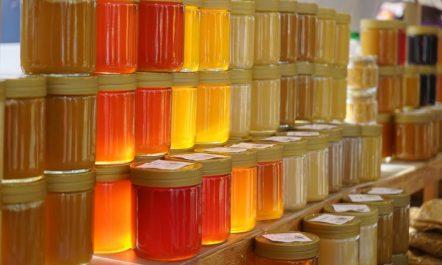 Foire du miel à sidi moussa (ALGER) : Réelle mise en valeur du produit algérien 100% naturel